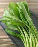 Οργανικό κινεζικό λάχανο ή Bok Choy σε έναν δίσκο Στοκ Εικόνες