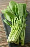 Οργανικό κινεζικό λάχανο ή Pok Choi σε έναν δίσκο Στοκ εικόνα με δικαίωμα ελεύθερης χρήσης