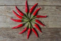 Οργανικό κόκκινο - καυτά πιπέρια τσίλι στο αγροτικό ξύλινο υπόβαθρο Στοκ Φωτογραφία