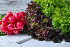 Οργανικό κόκκινο ραδίκι και πολύχρωμη φρέσκια σαλάτα μαρουλιού Στοκ Φωτογραφίες