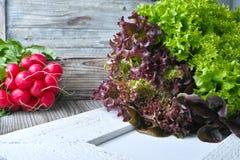 Οργανικό κόκκινο ραδίκι και πολύχρωμη φρέσκια σαλάτα μαρουλιού Στοκ Εικόνες
