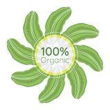 οργανικό λογότυπο 100 τοις εκατό Στοκ εικόνα με δικαίωμα ελεύθερης χρήσης