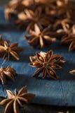 Οργανικό ξηρό αστέρι του γλυκάνισου Στοκ Φωτογραφίες