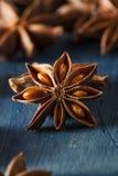 Οργανικό ξηρό αστέρι του γλυκάνισου Στοκ εικόνα με δικαίωμα ελεύθερης χρήσης