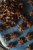Οργανικό ξηρό αστέρι του γλυκάνισου Στοκ Φωτογραφία
