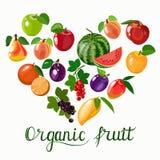 Οργανικό πρότυπο φρούτων επίσης corel σύρετε το διάνυσμα απεικόνισης Έμβλημα οργανικής τροφής Στοκ εικόνα με δικαίωμα ελεύθερης χρήσης