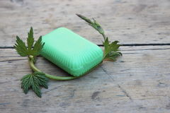 Οργανικό σαπούνι τουαλετών Στοκ εικόνες με δικαίωμα ελεύθερης χρήσης