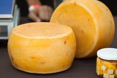 Οργανικό τυρί Στοκ εικόνα με δικαίωμα ελεύθερης χρήσης