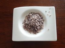Οργανικό υγιές κόκκινο άγριο ρύζι Bario Στοκ Εικόνα