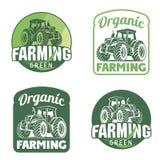 Οργανικό φρέσκο προϊόν διανυσματικός Ιστός λογότυπων σφαιρών Απεικόνιση αγροτικών φρέσκια διακριτικών Στοκ Εικόνες