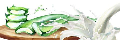 Οργανικό aloe Βέρα και παφλασμός γιαουρτιού Συρμένη χέρι απεικόνιση Watercolor Διανυσματική απεικόνιση