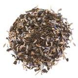 Οργανικό Lavender πράσινο τσάι angustifolia Lavandula που απομονώνεται στο άσπρο υπόβαθρο Στοκ φωτογραφία με δικαίωμα ελεύθερης χρήσης