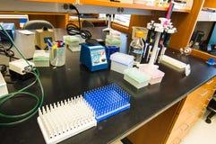 Οργανωμένος εργαστηριακός πάγκος σε προετοιμασία για το πείραμα Στοκ Φωτογραφία