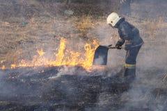 Οργιμένος δασικές πυρκαγιές άνοιξη Καίγοντας ξηρά χλόη, κάλαμος κατά μήκος της λίμνης Η χλόη καίει στο λιβάδι Οικολογική καταστρο στοκ εικόνες με δικαίωμα ελεύθερης χρήσης