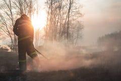 Οργιμένος δασικές πυρκαγιές άνοιξη Καίγοντας ξηρά χλόη, κάλαμος κατά μήκος της λίμνης Η χλόη καίει στο λιβάδι Οικολογική καταστρο στοκ εικόνες