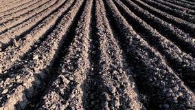 Οργωμένος τομέας με το σκοτεινό χώμα φιλμ μικρού μήκους