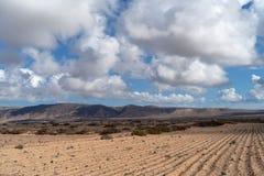 Οργωμένος τομέας, νησί Lanzarote, καναρίνι, Ισπανία στοκ φωτογραφία με δικαίωμα ελεύθερης χρήσης
