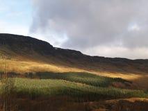 ορεινές περιοχές σκωτσέζικα Στοκ Εικόνα