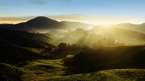 Ορεινή περιοχή του Cameron Στοκ Εικόνα