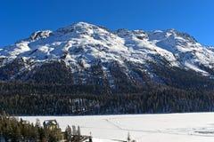 Ορεινός όγκος Rosatsch Piz, StMoritz, κοιλάδα Engadin, Grisons, Ελβετία στοκ εικόνα με δικαίωμα ελεύθερης χρήσης
