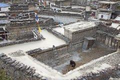 Ορεινό χωριό Marpha στα Ιμαλάια, Νεπάλ. Στοκ εικόνα με δικαίωμα ελεύθερης χρήσης