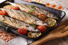 Ορεκτικά ψημένα στη σχάρα ψάρια με τα λαχανικά σε μια παν κινηματογράφηση σε πρώτο πλάνο σχαρών Στοκ Εικόνες