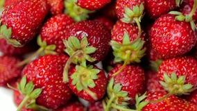 Ορεκτικές και όμορφες φράουλες νωπών καρπών ως υπόβαθρο τροφίμων Οργανική υγιής ώριμη διατροφή φραουλών φιλμ μικρού μήκους