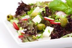 ορεκτική υγιής σαλάτα στοκ εικόνα