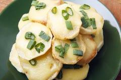 Ορεκτικό των πατατών, του τυριού και των πράσινων κρεμμυδιών Υπάρχει χώρος για το κείμενο Στοκ Εικόνες
