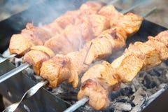 Ορεκτικό shish kebab στον καπνό μιας δασικής πυρκαγιάς στοκ εικόνα με δικαίωμα ελεύθερης χρήσης