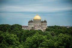 Ορθόδοξος χρυσός θόλος καθεδρικών ναών επάνω από τα δέντρα πόλεων της Ρήγας Στοκ Εικόνες