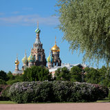 Ορθόδοξη Εκκλησία του Savior στο αίμα θόλος Isaac Πετρούπολη Ρωσία s Άγιος ST καθεδρικών ναών Στοκ Φωτογραφία