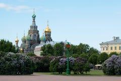Ορθόδοξη Εκκλησία του Savior στο αίμα θόλος Isaac Πετρούπολη Ρωσία s Άγιος ST καθεδρικών ναών Στοκ εικόνα με δικαίωμα ελεύθερης χρήσης