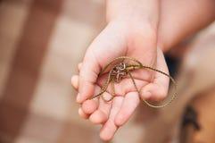 Ορθόδοξος σταυρός στο χέρι του παιδιού στοκ φωτογραφία
