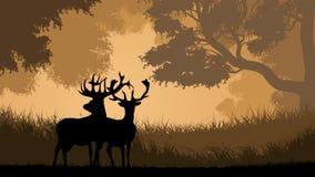 Οριζόντια απεικόνιση των άγριων ζώων στο ξύλο διανυσματική απεικόνιση