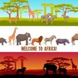 Οριζόντια αφρικανικά εμβλήματα ζώων καθορισμένα διανυσματική απεικόνιση