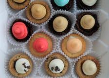 Οριζόντια εικόνα αρκετοί δάγκωμα-που ταξινομούνται brownies με πυκνά να παγώσει στοκ εικόνα με δικαίωμα ελεύθερης χρήσης