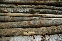 οριζόντια κούτσουρα Στοκ φωτογραφία με δικαίωμα ελεύθερης χρήσης