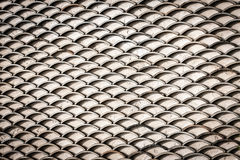 Οριζόντιες κλίμακες ψαριών Στοκ Εικόνες