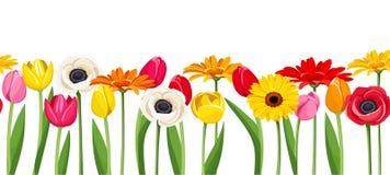 Οριζόντιο άνευ ραφής υπόβαθρο με τα ζωηρόχρωμα λουλούδια επίσης corel σύρετε το διάνυσμα απεικόνισης Στοκ φωτογραφία με δικαίωμα ελεύθερης χρήσης