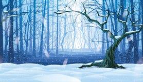 Οριζόντιο άνευ ραφής υπόβαθρο του τοπίου με το χειμερινό δάσος ελεύθερη απεικόνιση δικαιώματος