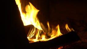 Οριζόντιο πανόραμα του καψίματος του ξύλου σε έναν φούρνο πετρών απόθεμα βίντεο