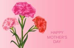 Οριζόντιο πρότυπο για την ημέρα της μητέρας με τα γαρίφαλα r r απεικόνιση αποθεμάτων