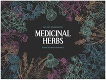 Οριζόντιο σκοτεινό πρότυπο καρτών με τα εκλεκτής ποιότητας σκίτσα των ιατρικών χορταριών και flowe Στοκ φωτογραφίες με δικαίωμα ελεύθερης χρήσης
