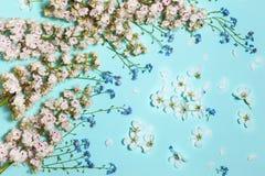 Οριζόντιο υπόβαθρο μεντών με τα λουλούδια άνοιξη Στοκ Φωτογραφίες