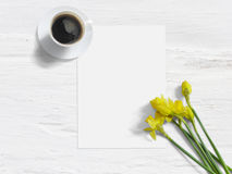 Ορισμένη άνοιξη φωτογραφία αποθεμάτων Θηλυκό πρότυπο με τα λουλούδια, τους ναρκίσσους, τον κατάλογο εγγράφου, και το φλιτζάνι του στοκ φωτογραφίες με δικαίωμα ελεύθερης χρήσης