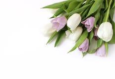 Ορισμένη άνοιξη φωτογραφία αποθεμάτων 2 όλα τα αυγά Πάσχας έννοιας νεοσσών κάδων ανθίζουν τη χλόη χρωμάτισαν τις τοποθετημένες νε Στοκ Φωτογραφία