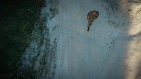 Ορισμένος περίπατος στρατιωτικών στον αμμώδη δρόμο απόθεμα βίντεο