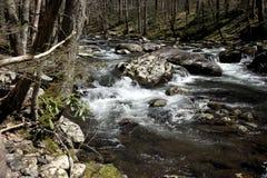 Ορμητικά σημεία ποταμού βουνών Smokey στοκ φωτογραφία