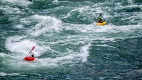 Ορμητικά σημεία ποταμού γουρνών κωπηλασίας Kayakers στο φαράγγι Fraser Στοκ φωτογραφία με δικαίωμα ελεύθερης χρήσης